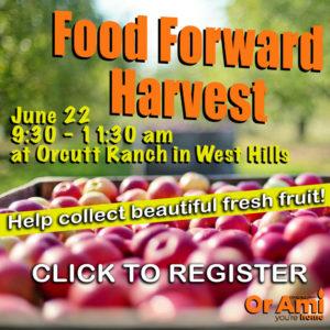 Food Forward Harvest 6 22 19 for CC