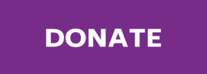 donate button not rounded purple