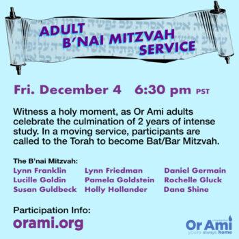 adult bnai mitzvah 12-4